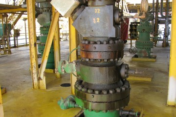 Wellhead Services